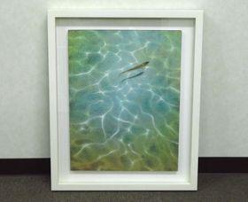 坂本藍子『魚の夢』日本画